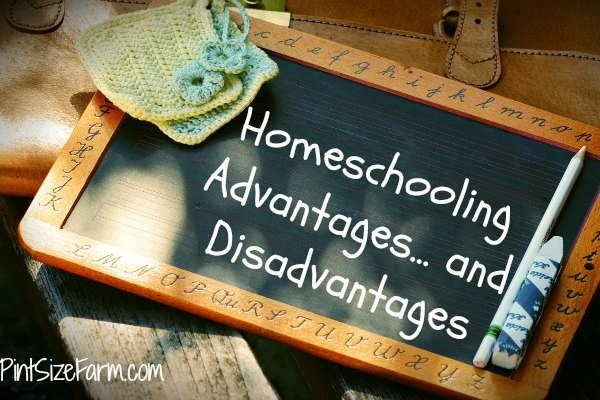 Advantages And Disadvantages Of Homeschooling During COVID-19 Time